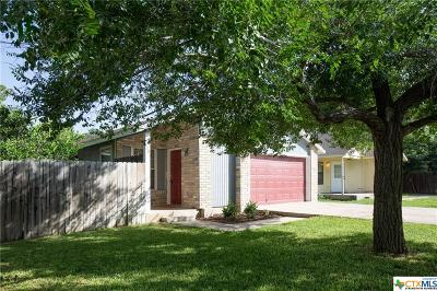 San Marcos Single Family Home For Sale: 1201 Conway Drive