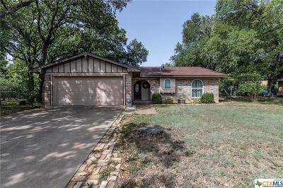 Belton Single Family Home For Sale: 1012 Terra Alta Drive