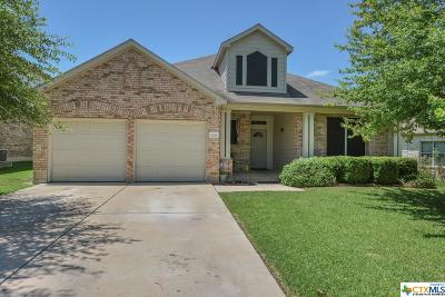 Pflugerville Single Family Home For Sale: 20844 Silverbell