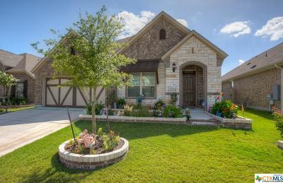 Buda TX Single Family Home For Sale: $324,450