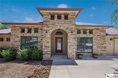 San Antonio Single Family Home For Sale: 314 Starlight