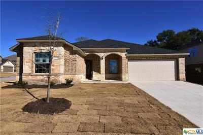 Killeen  Single Family Home For Sale: 7600 Melanite Drive