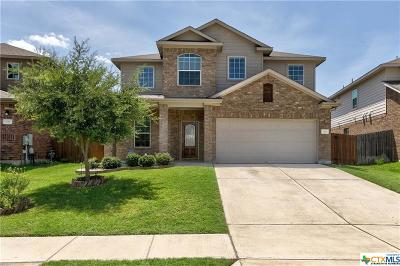 San Marcos Single Family Home For Sale: 721 Harwood