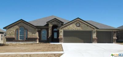 Killeen Single Family Home For Sale: 5002 Andreana