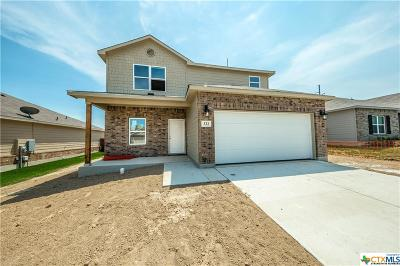 New Braunfels Single Family Home For Sale: 322 Benelli Drive