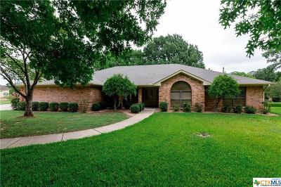 Salado Single Family Home For Sale: 518 Creek Run Circle