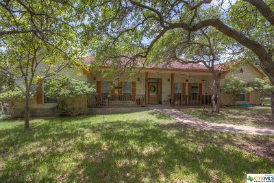 Wimberley Single Family Home For Sale: 1300 River Mountain