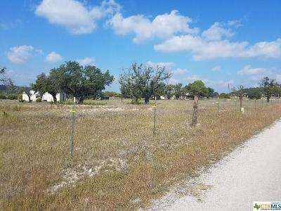 Lampasas Single Family Home For Sale: 656 County Road 1301