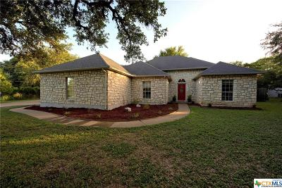 San Marcos Single Family Home For Sale: 1017 Mountain View Drive