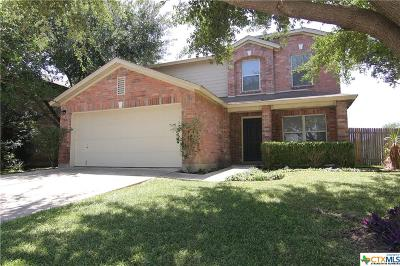 New Braunfels Single Family Home For Sale: 386 Scenic Meadow