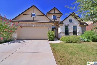 San Antonio Single Family Home For Sale: 11638 Kristidawn