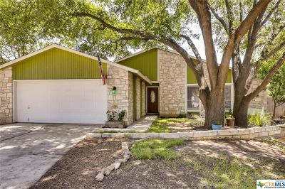 San Antonio Single Family Home For Sale: 13602 Earlywood Drive