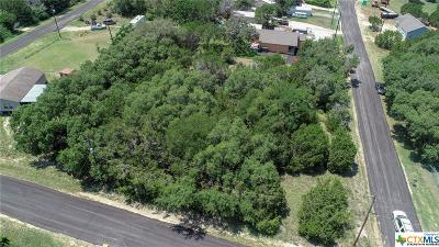 Canyon Lake Residential Lots & Land For Sale: Lots 10-11 Twin Elm