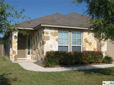 San Marcos Single Family Home For Sale: 208 Teron Drive