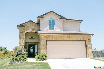 New Braunfels Single Family Home For Sale: 783 Guna Drive