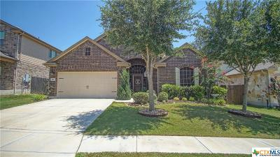 Cibolo Single Family Home For Sale: 401 Canterbury