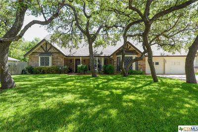 San Antonio Single Family Home For Sale: 1602 Poets Corner Street