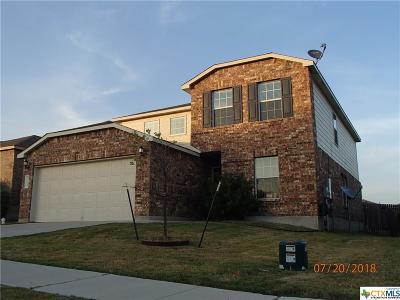 Killeen Single Family Home For Sale: 9302 Sandyford Court