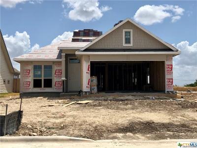 Temple Single Family Home For Sale: 1327 Kiskadee Branch Drive