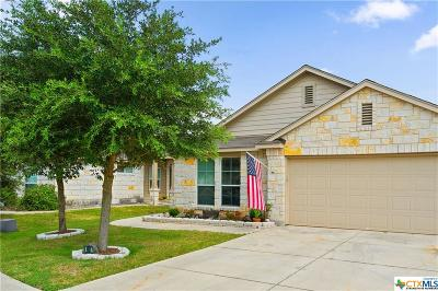 San Marcos Single Family Home For Sale: 401 Teron