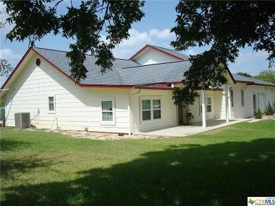 Seguin Single Family Home For Sale: 641 Weber Road