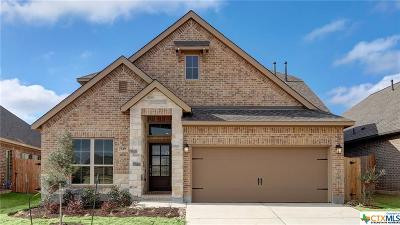 San Marcos Single Family Home For Sale: 549 Lacey Oak Loop