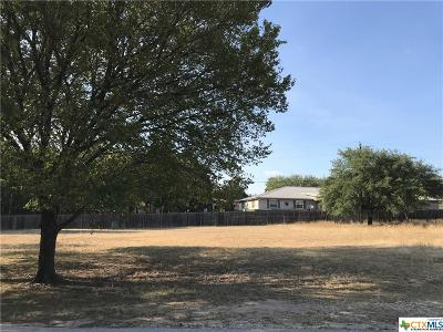 Harker Heights Residential Lots & Land For Sale: 2202 Fuller