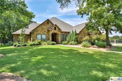 Belton Single Family Home For Sale: 1320 Overlook Ridge Dr.