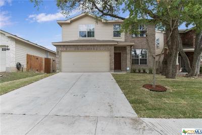 San Antonio Single Family Home For Sale: 17019 Ashbury Ldg