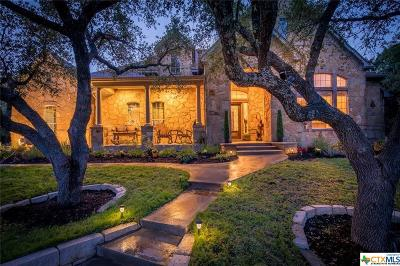 Leander Single Family Home For Sale: 18708 Angel Mountain Drive