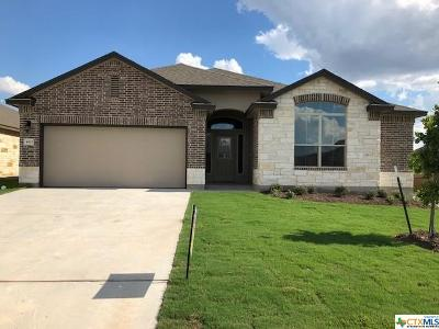 Temple, Belton Single Family Home For Sale: 4617 Abergavenny Drive