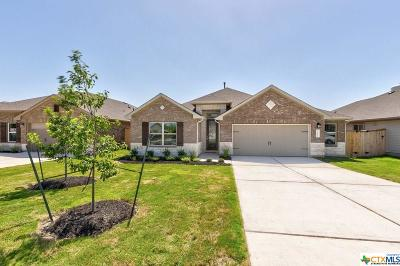 Kyle Single Family Home For Sale: 252 Gunnison Way