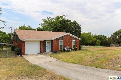 Kempner Single Family Home For Sale: 359 Pedernales Lane