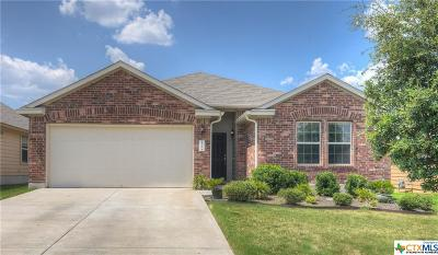 Kyle Single Family Home For Sale: 136 Beargrass