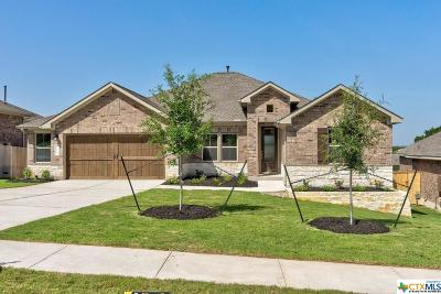 Kyle Single Family Home For Sale: 273 Cypress Forest Drive