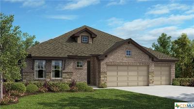 Kyle Single Family Home For Sale: 265 Arapaho Drive