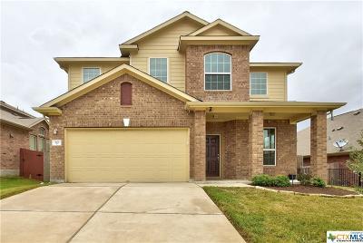 Buda Single Family Home For Sale: 466 Pond View