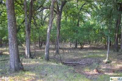 Coryell County Residential Lots & Land For Sale: Tbd-1 Camino Del Rio