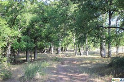 Coryell County Residential Lots & Land For Sale: Tbd-2 Camino Del Rio