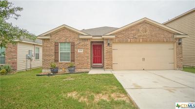 San Antonio Single Family Home For Sale: 12055 Luckey Vw