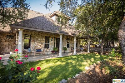 New Braunfels Single Family Home For Sale: 119 Sun River
