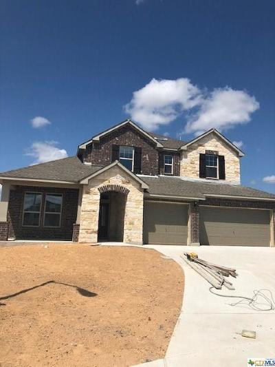 New Braunfels Single Family Home For Sale: 2718 Ridge Heights