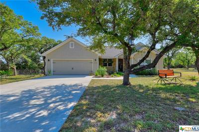 Canyon Lake Single Family Home For Sale: 1220 Four Winds Drive