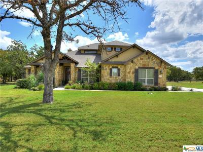 Georgetown Single Family Home For Sale: 405 Casa Verde
