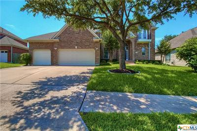 Austin Single Family Home For Sale: 8405 Sweetness Lane