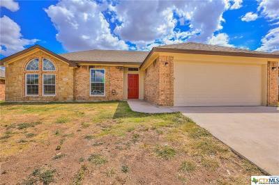 Killeen Single Family Home For Sale: 308 E Little Dipper Drive