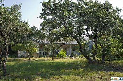 Leander Single Family Home For Sale: 24900 Bingham Creek