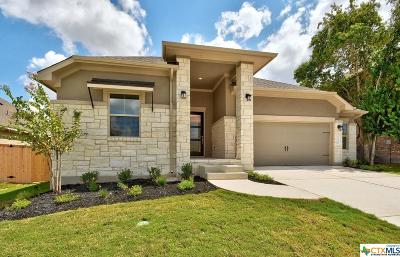 Kyle TX Single Family Home For Sale: $385,990