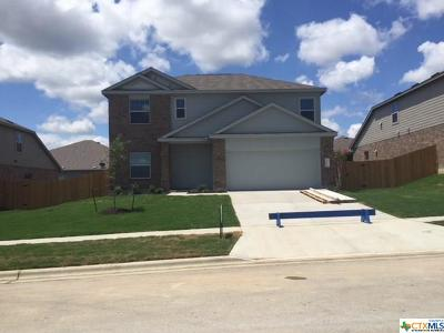 Killeen Single Family Home For Sale: 3906 Brunswick