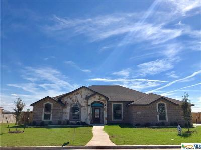 Bell County Single Family Home For Sale: 3013 Saint Luke